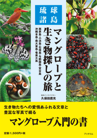 f:id:hirohiro3:20110427214754j:image:w360:left
