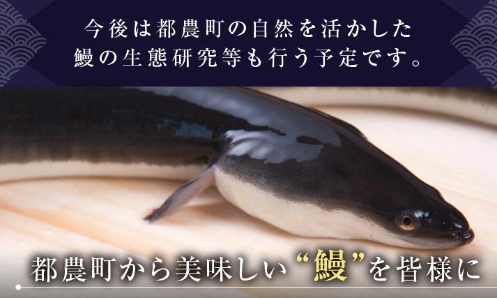f:id:hirohito6001:20190303142948p:plain