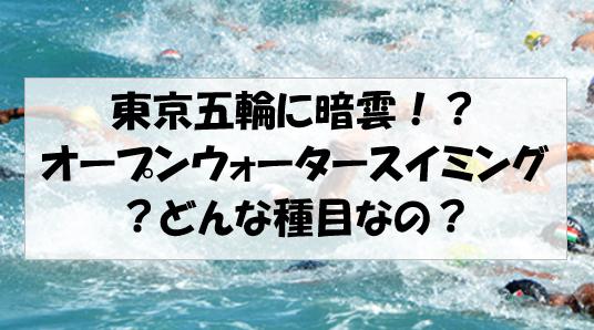 f:id:hirohito6001:20190817213511p:plain