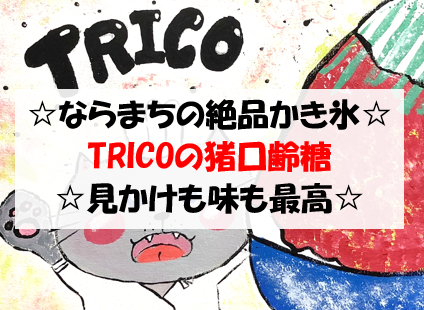 f:id:hirohito6001:20190916214351p:plain