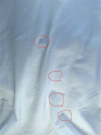 f:id:hirokentan:20200322215847j:image