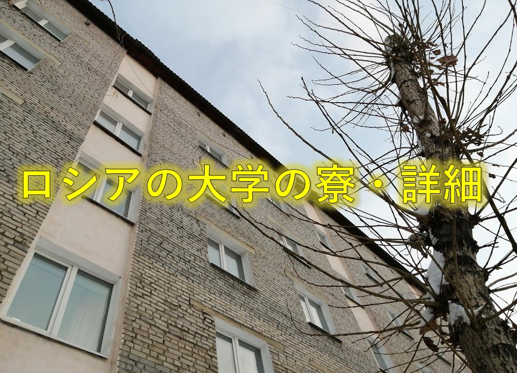 f:id:hiroki1ru:20191229164641p:plain