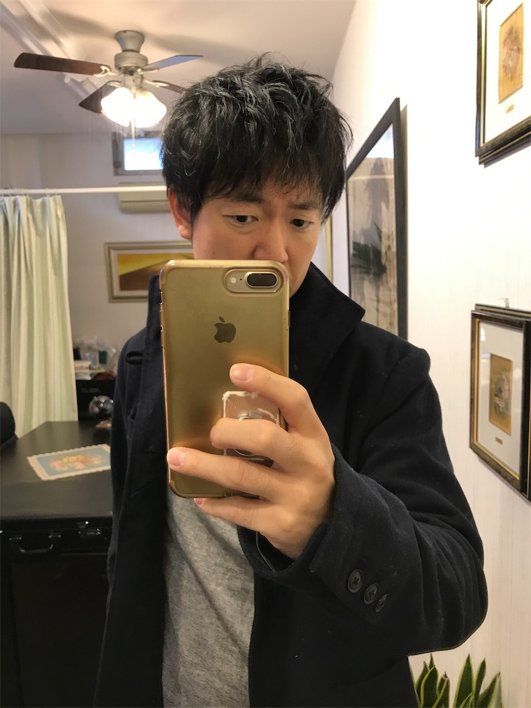 f:id:hirokikawakami:20191113080907j:image
