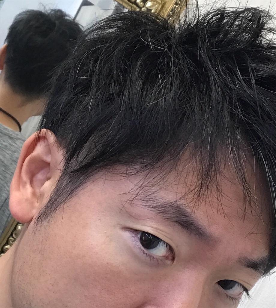 f:id:hirokikawakami:20191205125911j:image