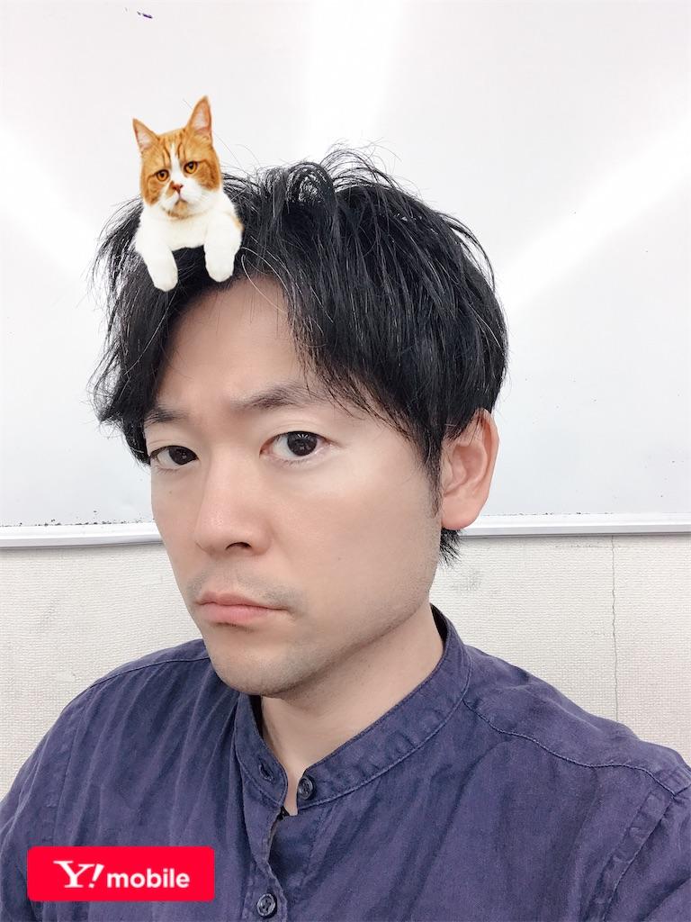 f:id:hirokikawakami:20200130124031j:image