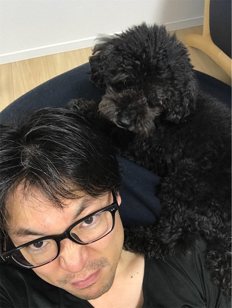 f:id:hirokikawakami:20200131231810j:image