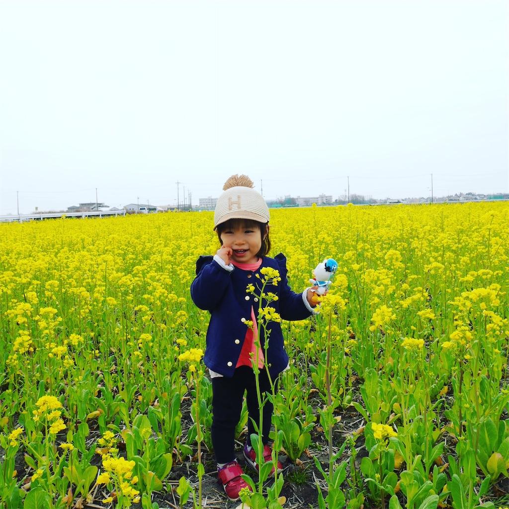 f:id:hirokikawakami:20200313135237j:image