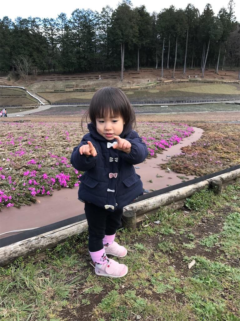 f:id:hirokikawakami:20200315184214j:image