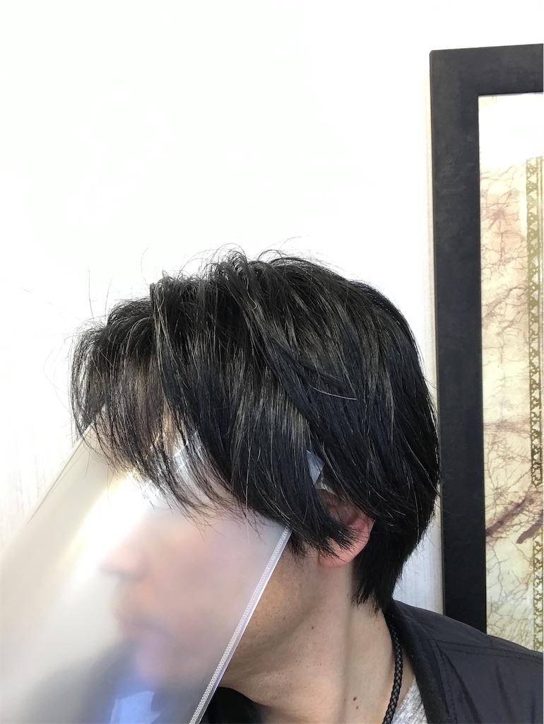f:id:hirokikawakami:20200403081203j:image