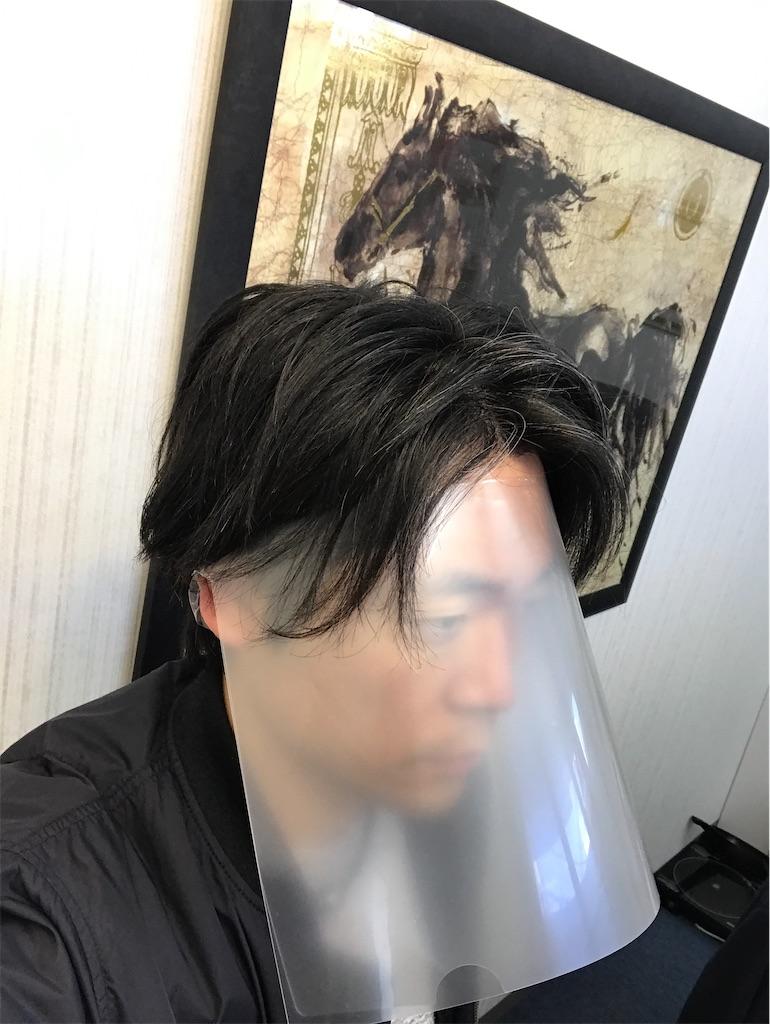 f:id:hirokikawakami:20200403081207j:image