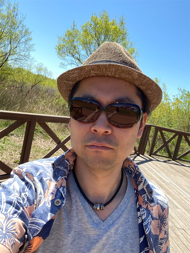 f:id:hirokikawakami:20200419122113j:image