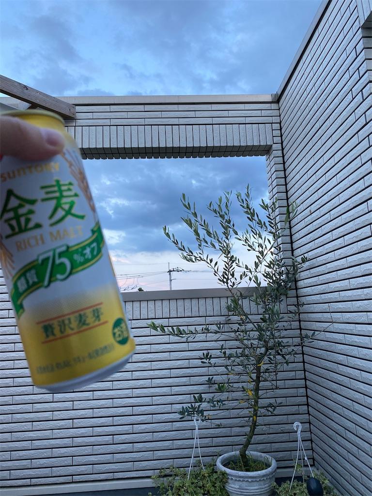f:id:hirokikawakami:20200802184935j:image