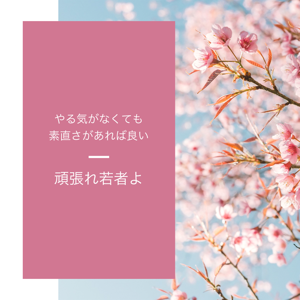 f:id:hirokikawakami:20210403065529p:image