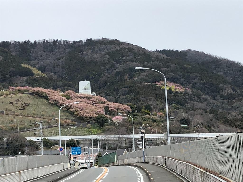 f:id:hirokiyokoyama:20190310180200j:image