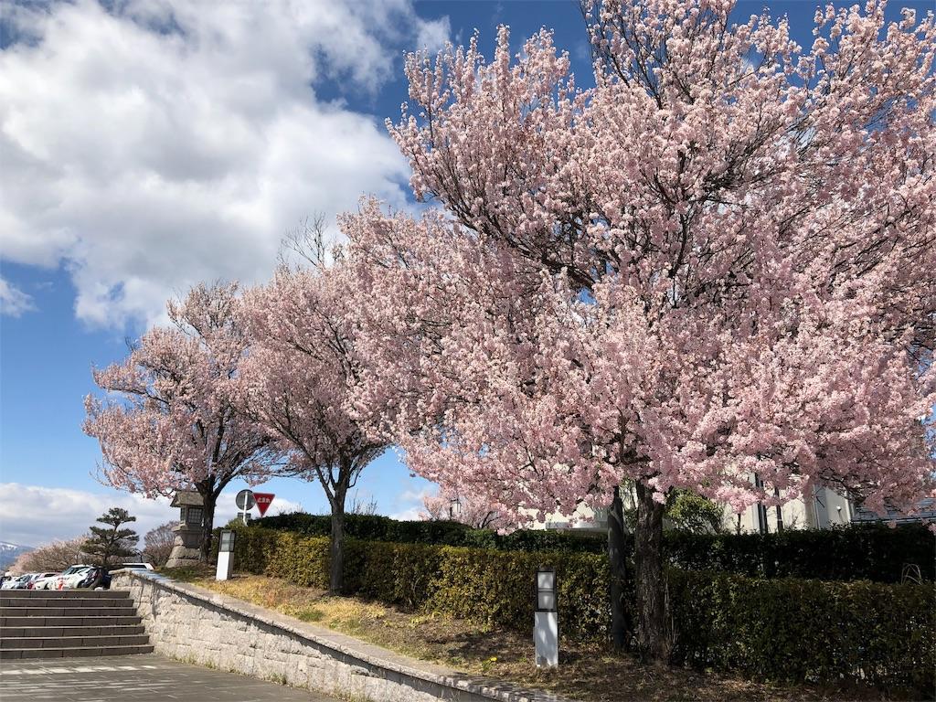 f:id:hirokiyokoyama:20190415200749j:image
