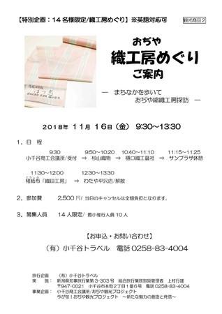 f:id:hirokoTANABE:20181108212830j:image:left