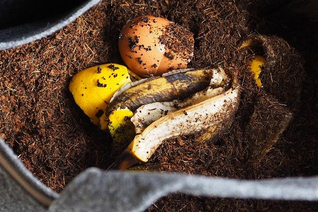 卵の殻や果物の皮などを入れてみました。