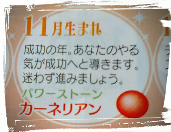 f:id:hirokorokoroko:20170121214329j:plain