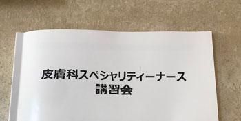 f:id:hirokorokoroko:20181207112814j:plain