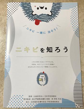 f:id:hirokorokoroko:20190304150004j:plain