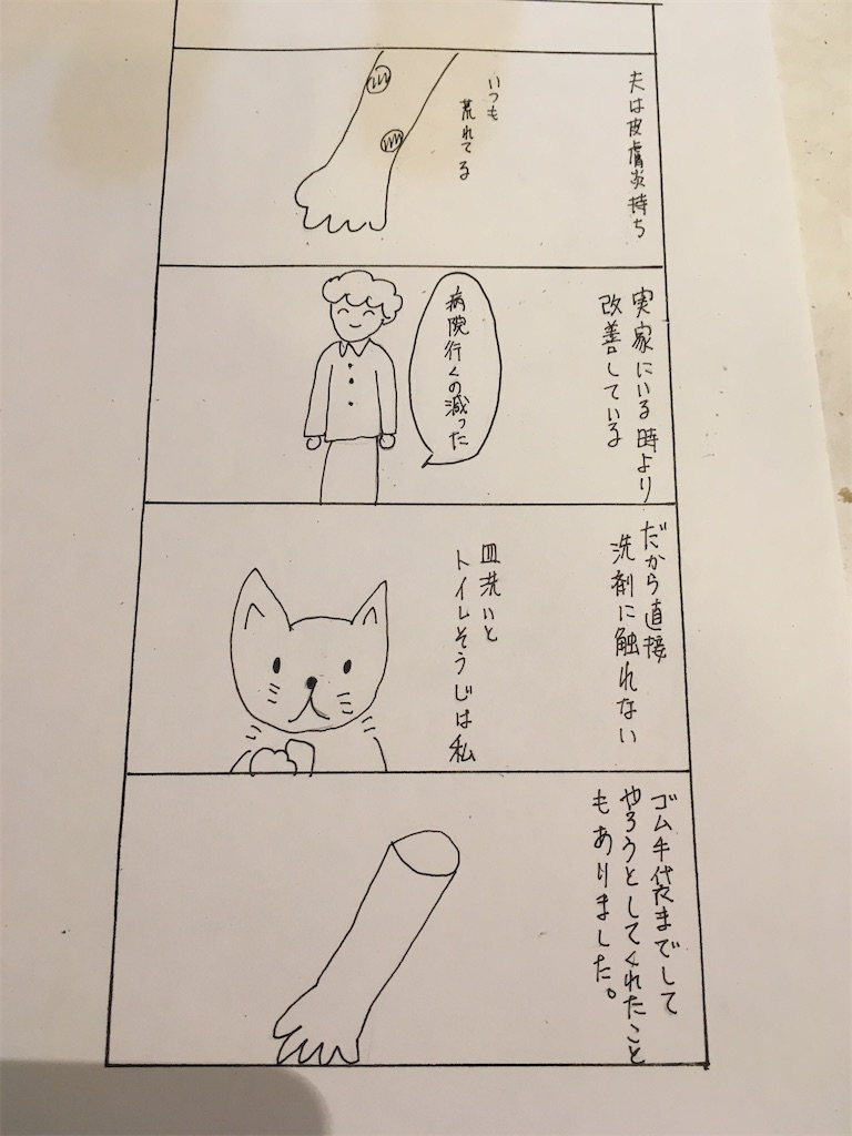 f:id:hiromi8600:20200813195802j:image