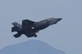 F35B      米海兵隊岩国