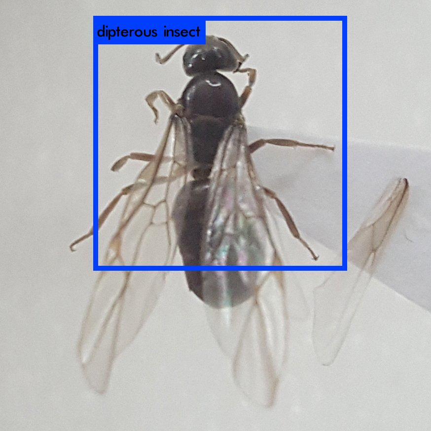 f:id:hiromichinomata:20170710003505p:plain