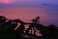 京都新聞写真コンテスト「朝焼けの棚田」