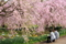 京都新聞写真コンテスト「これからの二人」」