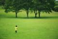 京都新聞写真コンテスト「草原を走る」
