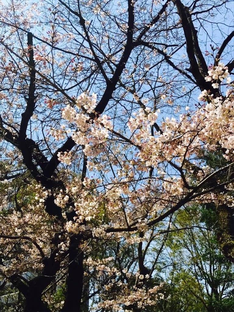 f:id:hironoriiyoshiiii:20170405073450j:image
