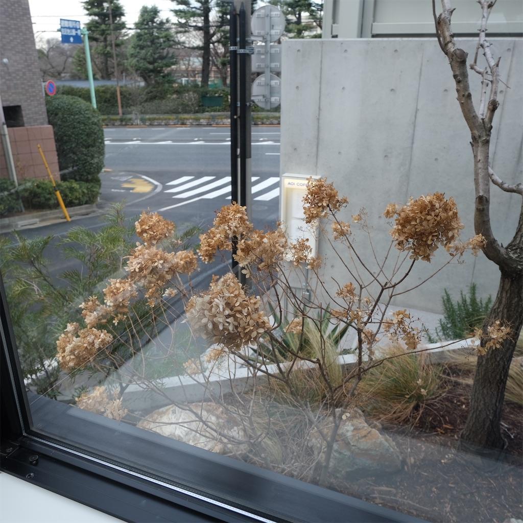 f:id:hirorocafe0106:20210105221642j:image