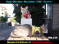 Margherita & Caterina, #0982, Happy Birthday!