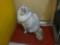 阿猫地攤(Cat Store), #0439