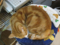 阿猫地攤(Cat Store), #0498
