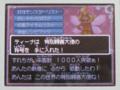 DQ9 すれちがい通信1000人達成, #3