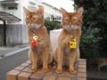 Beatrice & Elisabetta, #3664