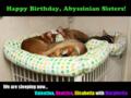 Happy Birthday! 2011.02.15
