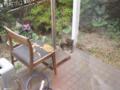Visitor20110505, #4515