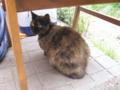 Visitor20110505, #4524