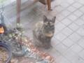 Visitor20110801, #4698