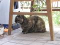 Visitor20110829, #5013