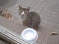 Visitor20120216, #5670
