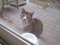 Visitor20120216, #5674