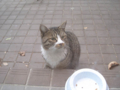 Visitor20120216, #5680