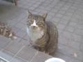 Visitor20120218, #5690