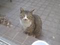 Visitor20120218, #5691
