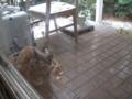 Visitor20120229, #5784