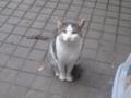 Visitor20121019, #6389