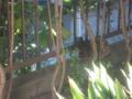Visitor20120505, #6150